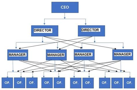 companies structure 5 organizational structure exles which to use