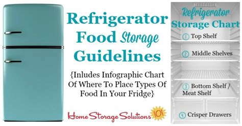 fridge layout guide refrigerator storage chart guidelines where to place