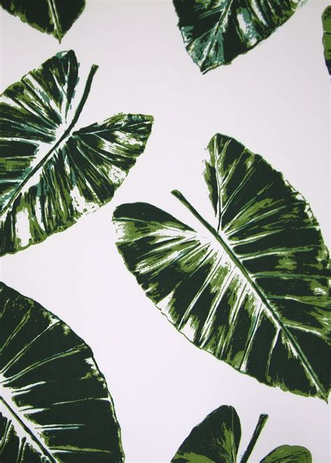 banana palm wallpaper banana leaves rose cumming for dessin fournir products