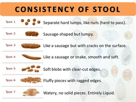 What Foods Make Your Stool Soft image gallery stools
