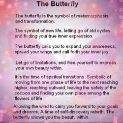 Meaning Of Selves - love butterflies and what these beauties symbolize beautiful butterfly pinterest butterfly