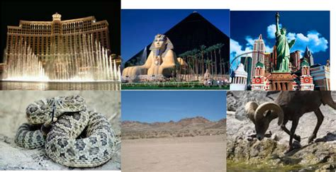 5 themes of geography nevada the five themes of geography home