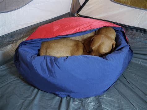 bed sack the most unique gift for pet parents this season