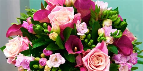 flowers for s day image gallery s day flowers