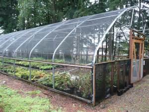 winterizing the hardy fern foundation s hoop house nancy