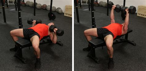 difference between dumbbell and barbell bench press muscular strength articles