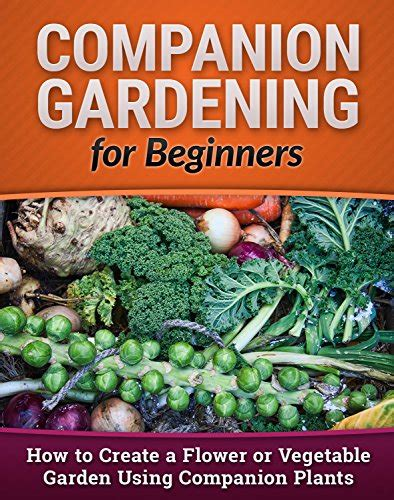how to start a vegetable garden for beginners download quot companion gardening for beginners how to create