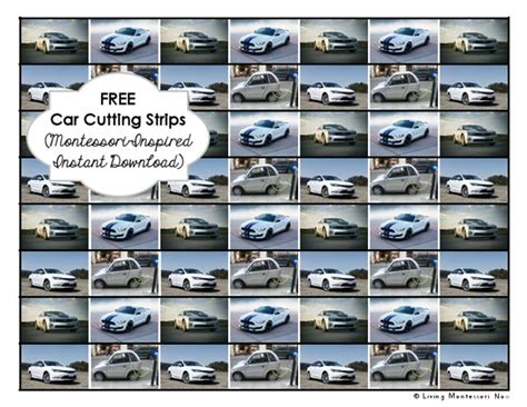 printable montessori cutting strips free car cutting strips montessori inspired instant