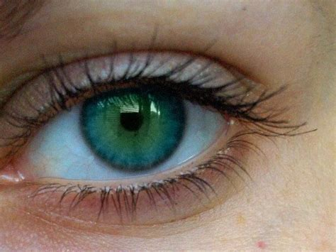 blue green 1000 ideas about blue green eyes on pinterest green