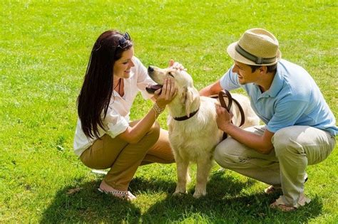 excessive panting in excessive panting symptoms and causes