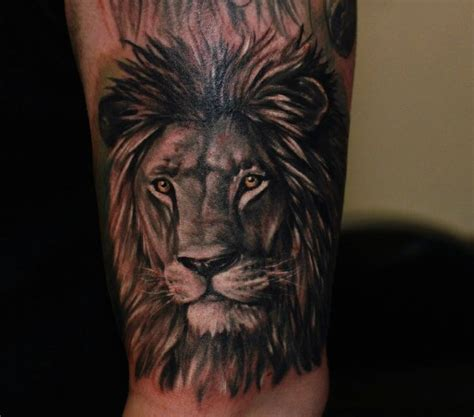 black and grey lion tattoos 24 best images about black grey tattoos on