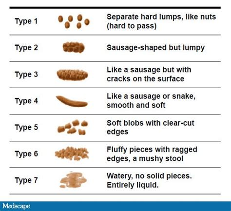 Different Types Of Stool Tests by Bowel Movement Driverlayer Search Engine