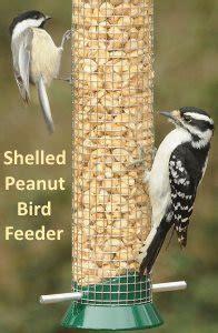 peanut bird feeder attracts a variety of birds