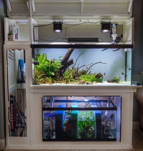 Custom Filtration Plumbing Corpus Christi by 25 Best Ideas About Aquarium Sump On