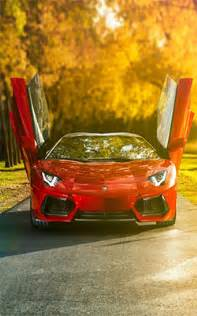 lamborghini aventador roadster free hd