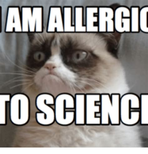 Science Memes - science cat www imgkid com the image kid has it