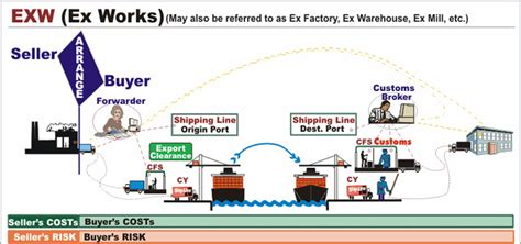 exw and fob explained for shipping incoterms forest shipping