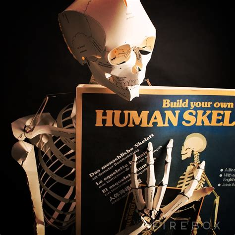 Make Your Own Paper Skeleton - build your own sized human skeleton firebox