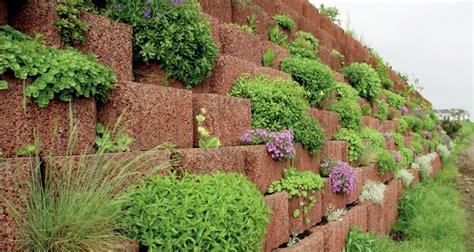 fiori particolari da giardino giardinaggio idee originali per decorare il vostro
