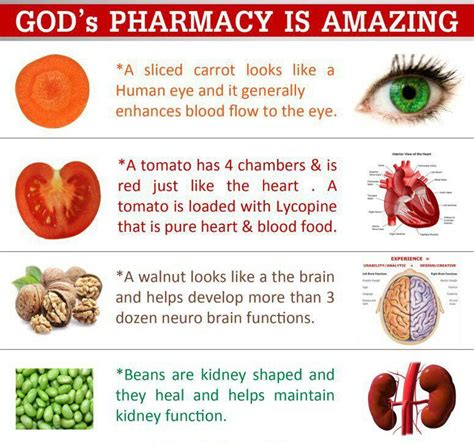 health through gods pharmacy god s pharmacy is amazing monsafety