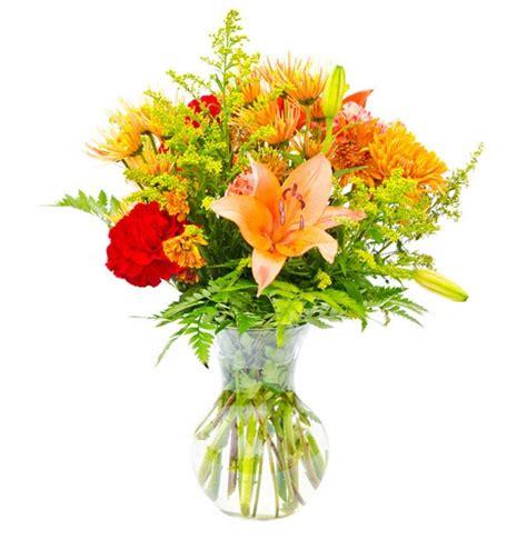 www fiori it consegna fiori in venezia fiori e piante consegnati