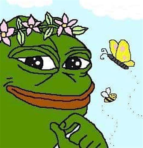 Frog Face Meme - pepe the frog branded a hate symbol