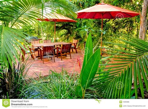 in the backyard or on the backyard tropical backyard garden setting royalty free stock image