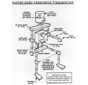 Acoustics  Does The Human Body Have A Resonant Frequency