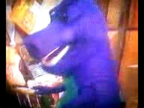 barney and the backyard show