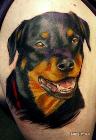 rottweiler tattoos 54 best tattoos images on inspiration ideas and amazing tattoos