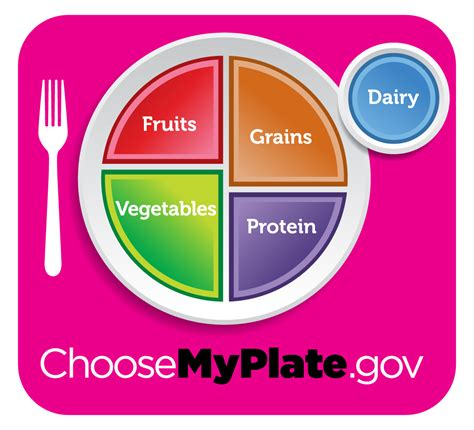 your health matters the coolest thing about choosemyplate gov