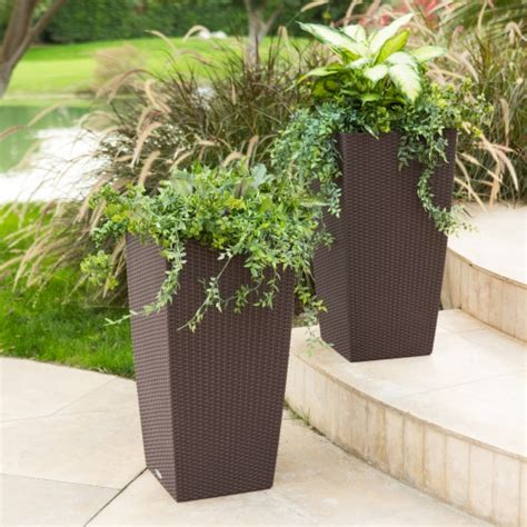 Outdoor Self Watering Planters by Square Lechuza Cubico Cottage Self Watering Resin Planter