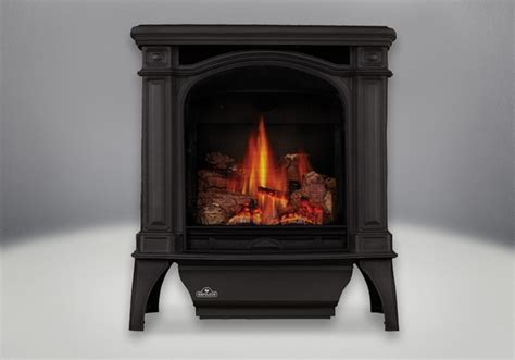 Napoleon Gas Fireplace Prices by Napoleon Bayfield Direct Vent Cast Iron Gas Stove Gds25nsb