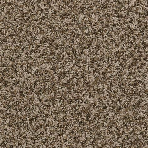 shop supernova cashew frieze indoor carpet at lowes com