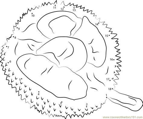coloring book for adults singapore durian in singapore dot to dot printable worksheet