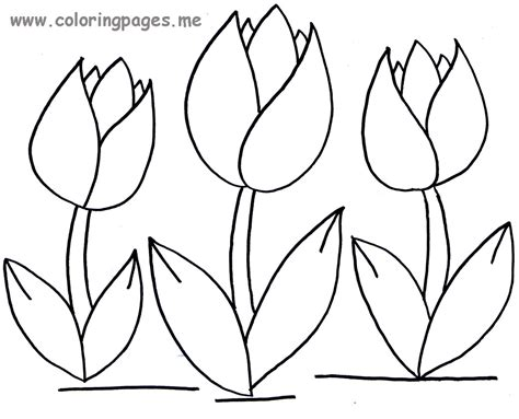 Flowers Coloring Pages Print by Tulips Flowers Coloring Pages And Tulips Crafts