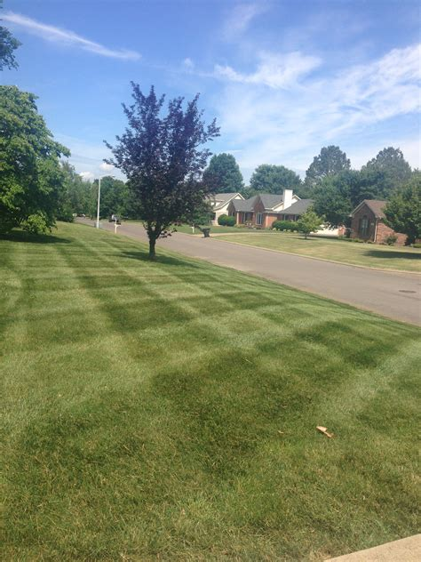 Get Lawn Care Service In Murfreesboro Tn From Legacy Landscaping Murfreesboro Tn