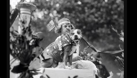 Sergeant Stubby In Ww1 Pics Meet Sergeant Stubby The Most Decorated Of Ww1 American News