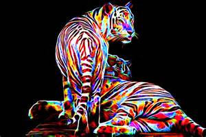 colorful tiger colored tigers by megaossa on deviantart