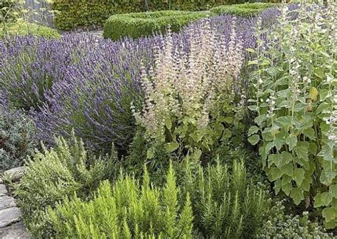 orto e giardino orto e giardino ortaggi caratteristiche dell orto