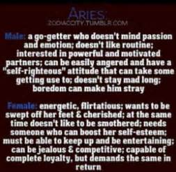 i ve got more male aries characteristics aries