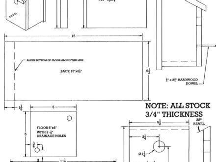 sparrow house plans bird house plans sparrow image mag