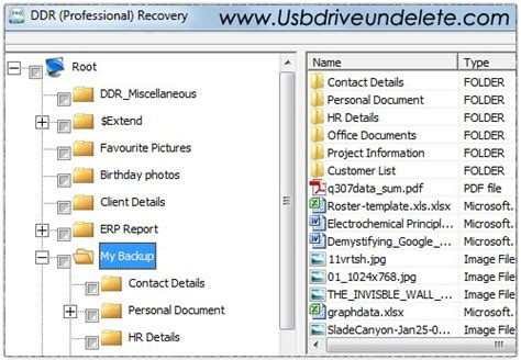 ddr professional data recovery software full version all categories kindlplaza