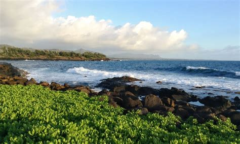 hawaii vacation with airfare and moped rental from beyond boundaries travel in kapaa hi