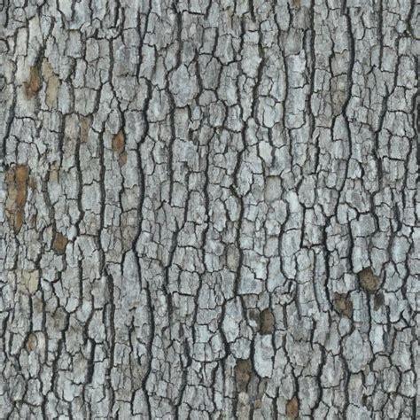 tree bark 3 3dcg