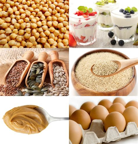 protein for vegetarians protein sources for vegetarians and the dirt