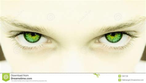 imagenes de ojos verdes para facebook olhos verdes fortes imagem de stock royalty free imagem
