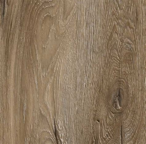 mountain oak 56932