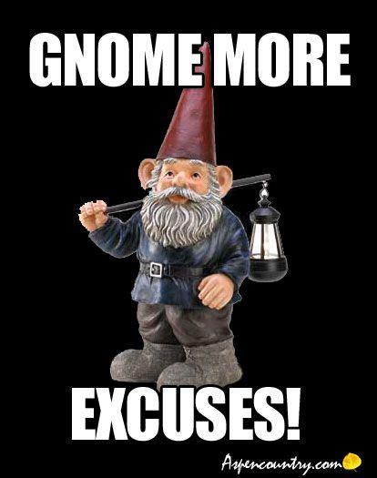 Gnome Meme - best 25 funny gnomes ideas on pinterest garden gnomes
