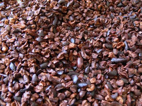 cocoa nibs the ultimate chocolate blog using cacao nibs to make